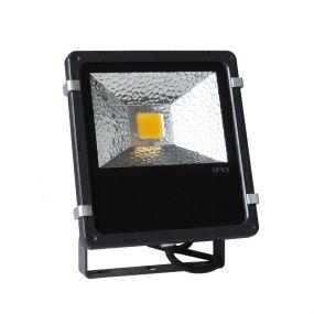 30W projecteur LED (liquidation)